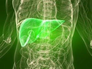 liver healthy diet