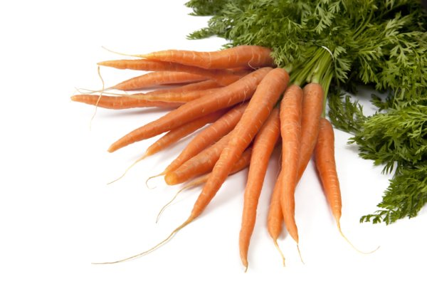 bunch of raw carrots